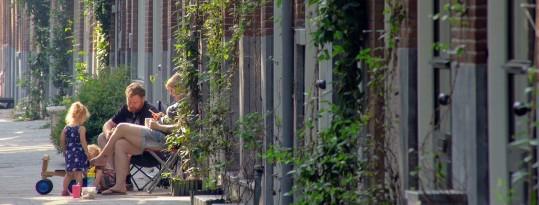 Groei en bloei in Rotterdam-West